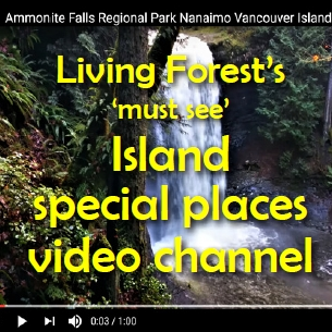 Welcome to the Living Forest Oceanside Campground + RV Park